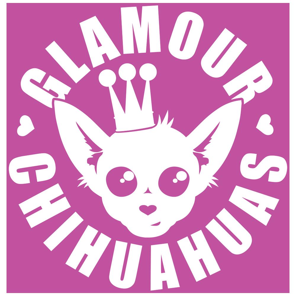 Glamour Chihuahuas - Beautifully Glamorous Chihuahua Furbabies